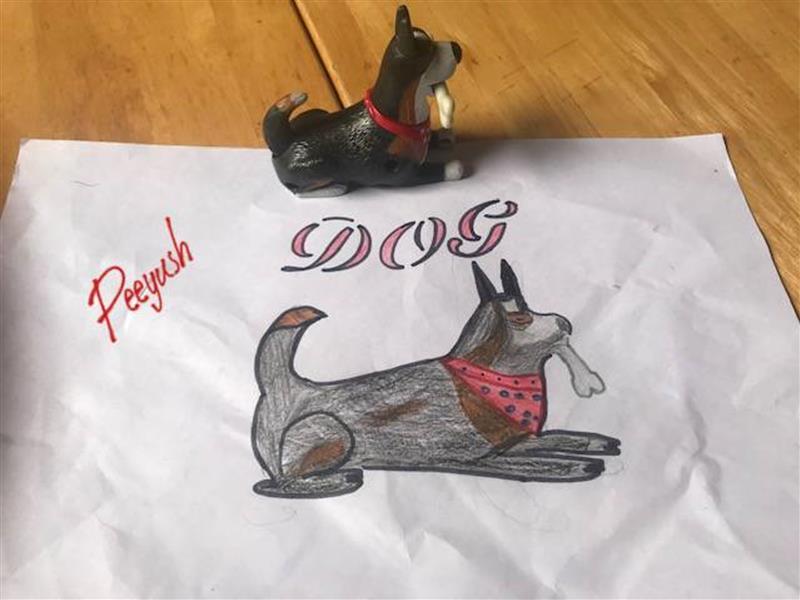 dog portrait Peeyush.jpg