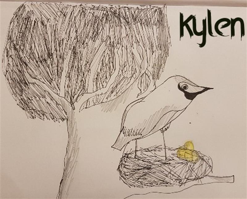 Bird's best art (1).jpg