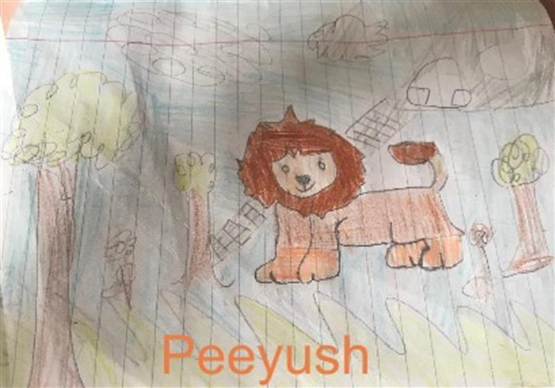 Peeyush Lion Art.jpg