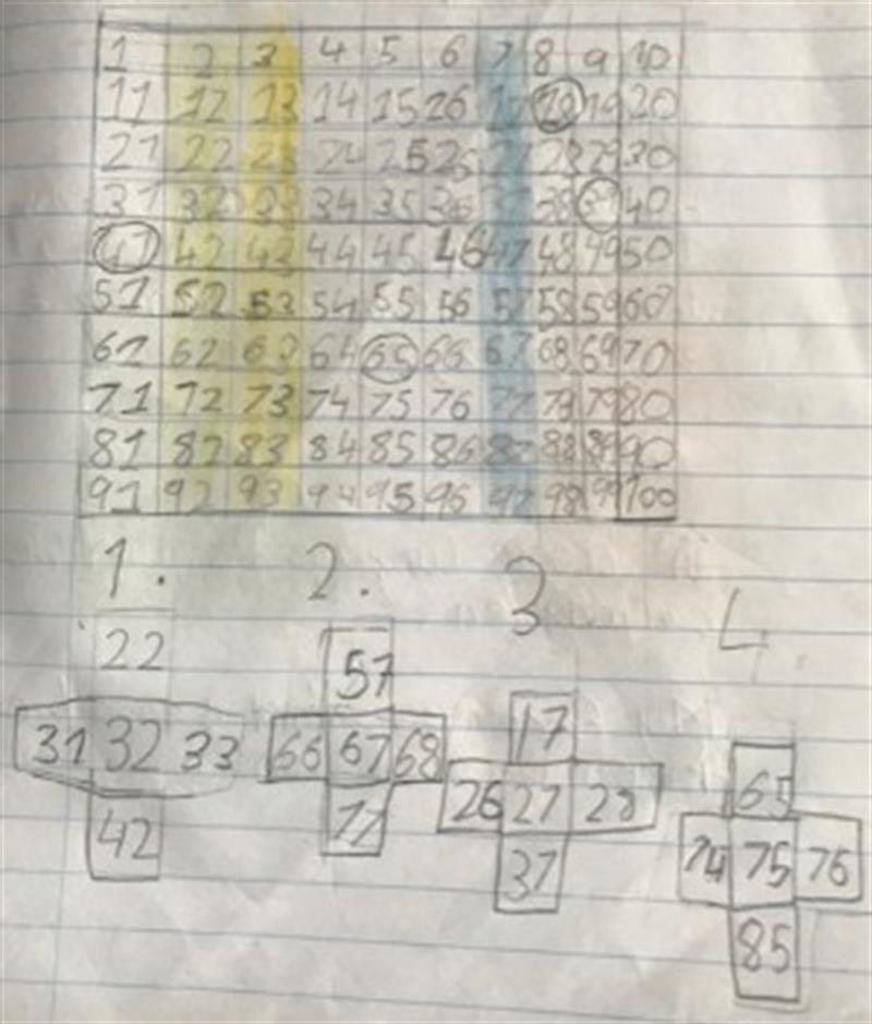 Peeyush Maths 100.jpeg