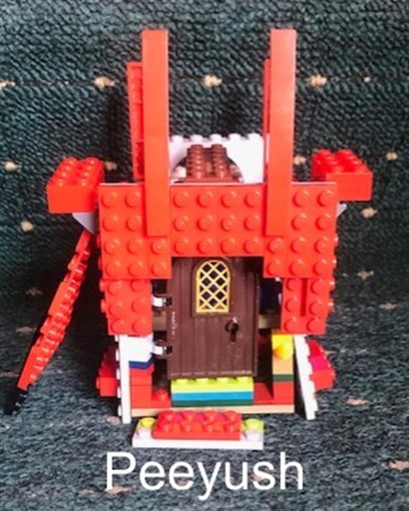 Peeyush Lego tardis.jpg