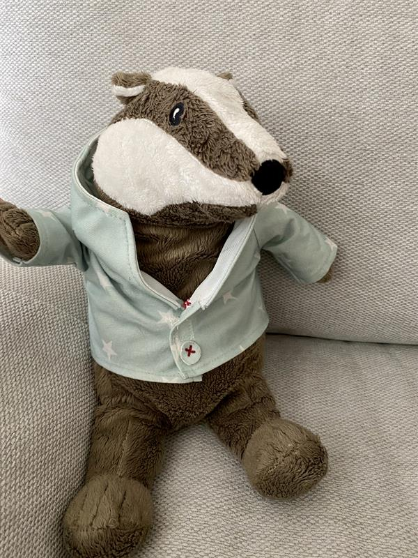 Room 7: Broc the Badger