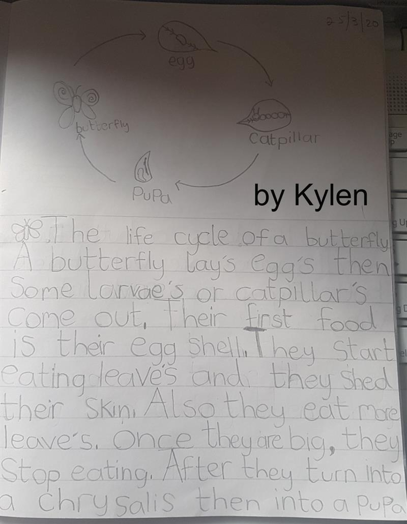 Kylen Writing (1).jpg