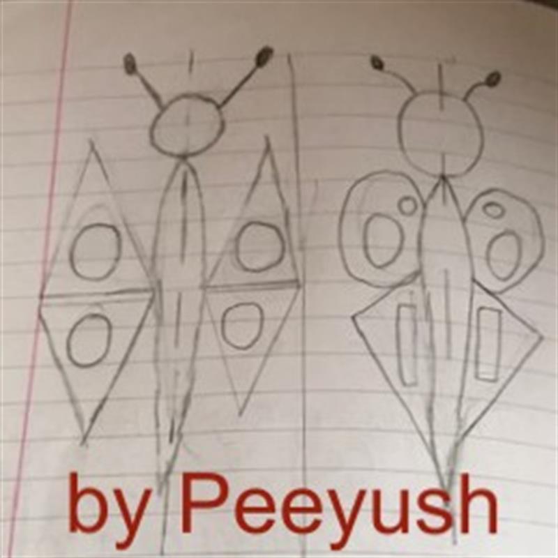 Peeyush Butterfly Symmetry.jpg
