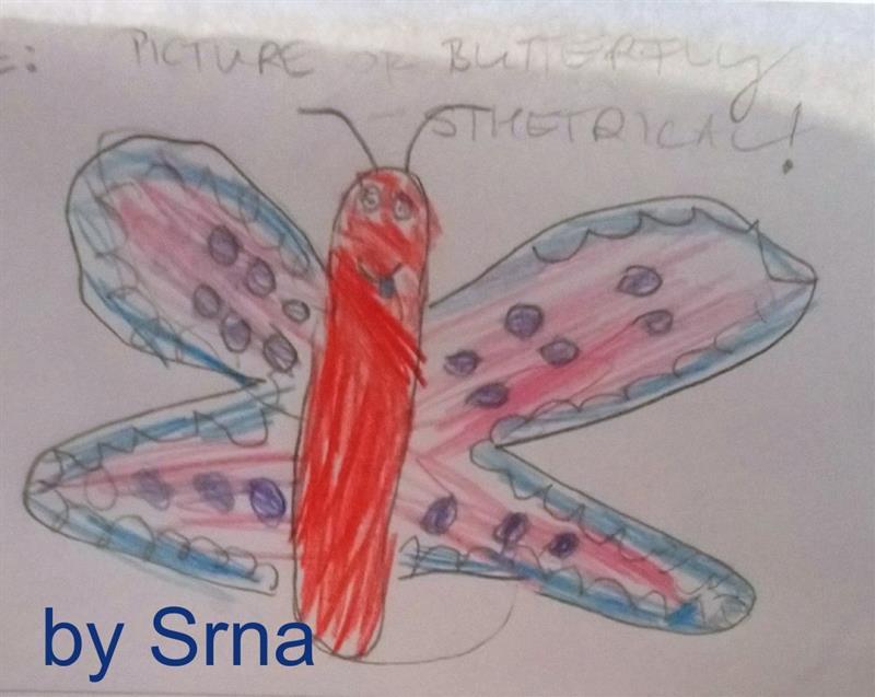 Srna Butterfly.jpg