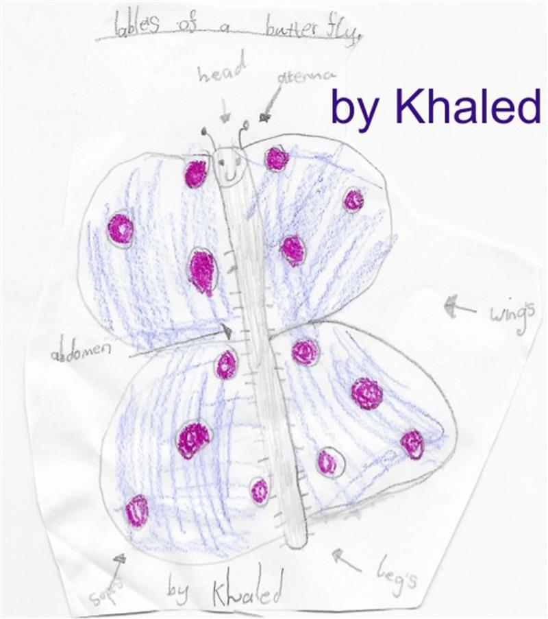 khaled butterlfy.jpg